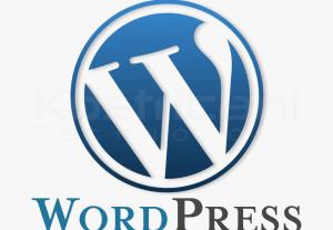 749I will create amazing wordpress sites